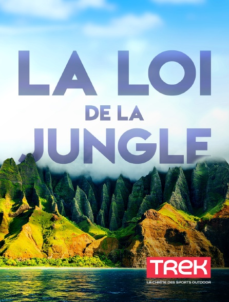 Trek - La loi de la jungle