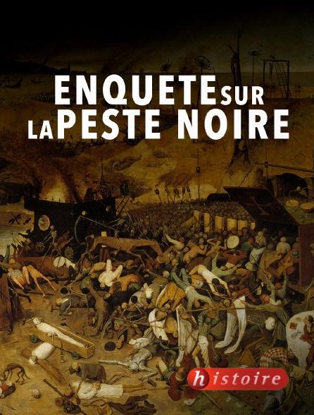 Histoire - Enquête sur la peste noire