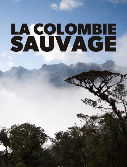 La Colombie sauvage