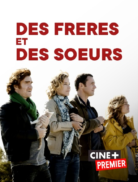 Ciné+ Premier - Des frères et des soeurs