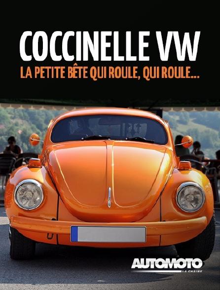 Automoto - Coccinelle VW, la petite bête qui roule, qui roule...