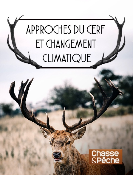 Chasse et pêche - Approches du cerf et changement climatique