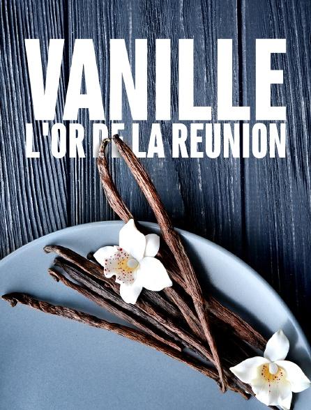 Vanille, l'or de La Réunion