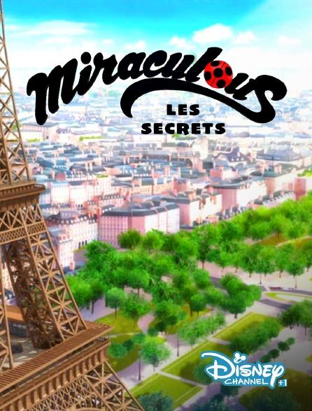 Disney Channel +1 - Miraculous : les secrets