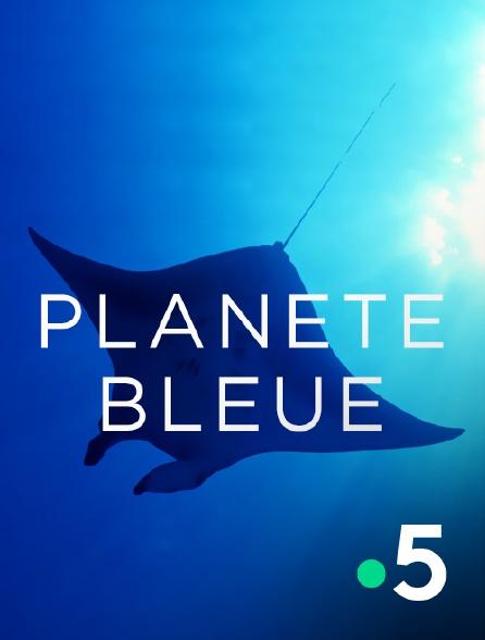 France 5 - Planète bleue