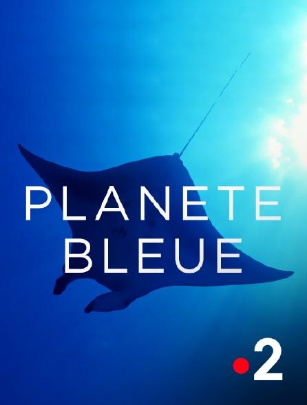 France 2 - Planète bleue