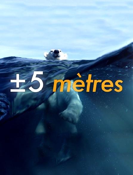 A +/- 5 mètres de la surface des océans