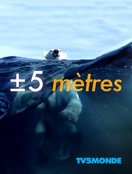 TV5MONDE - A +/- 5 mètres de la surface des océans