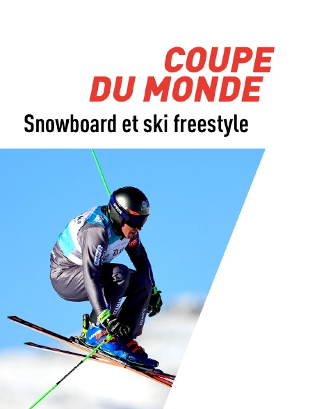 Coupe du monde 2019/2020 (Snowboard et ski freestyle)