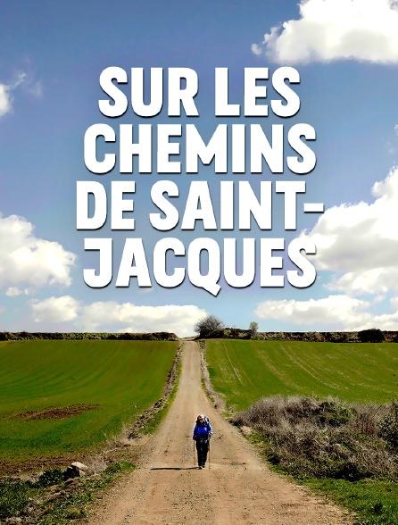 Sur les chemins de Saint-Jacques
