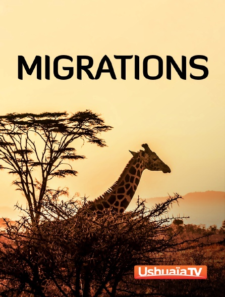 Ushuaïa TV - Migrations