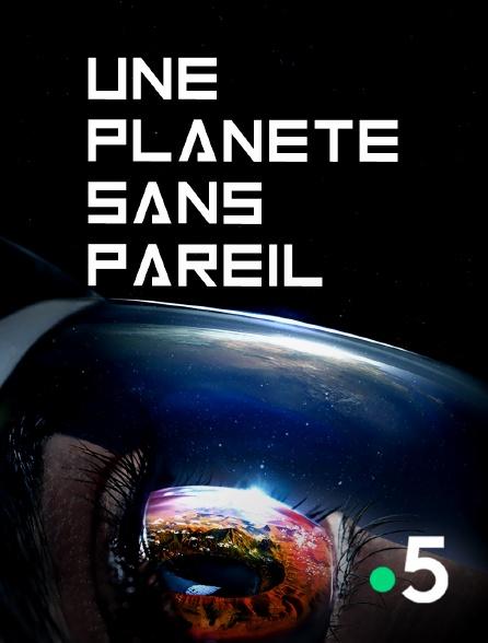 France 5 - Une planète sans pareil