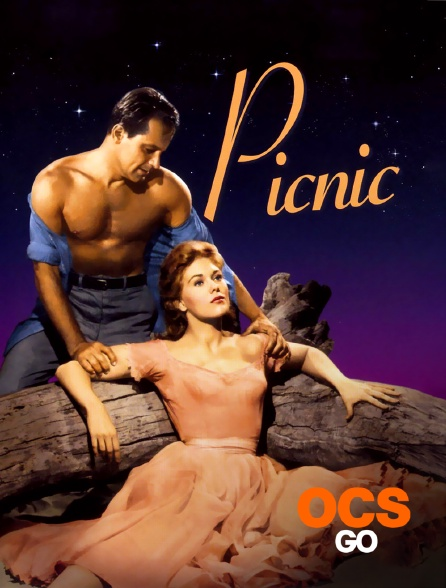 OCS Go - Picnic