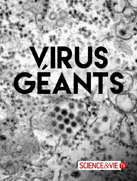 Science et Vie TV - Virus géants