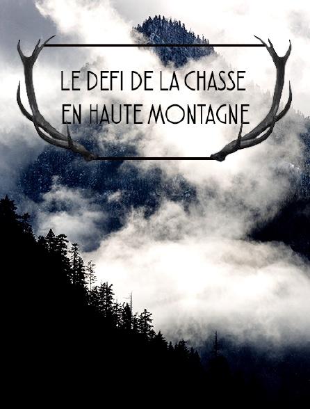 Le défi de la chasse en haute montagne