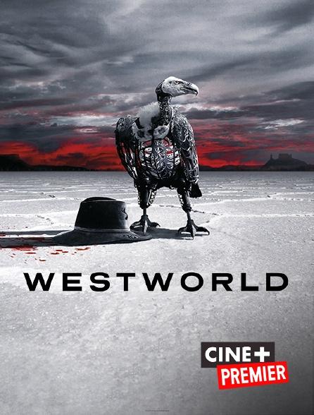 Ciné+ Premier - Westworld