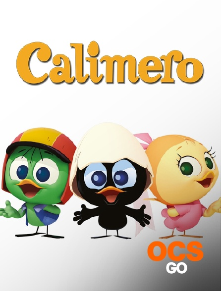OCS Go - Calimero