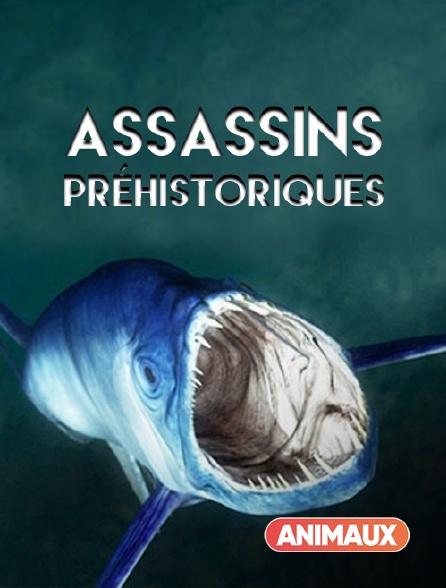 Animaux - Assassins préhistoriques