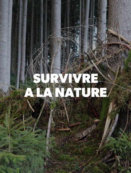 Survivre à la nature