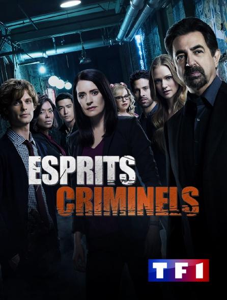 TF1 - Esprits criminels