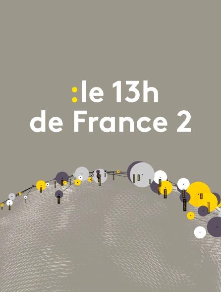 Le 13h de France 2 (Journal 13h00)