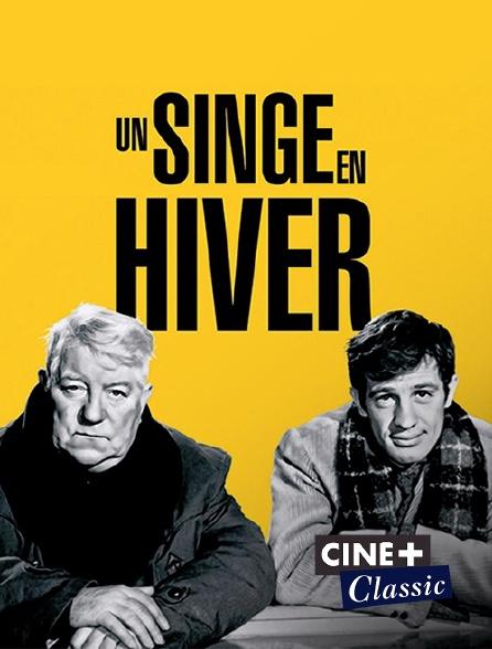 Ciné+ Classic - Un singe en hiver