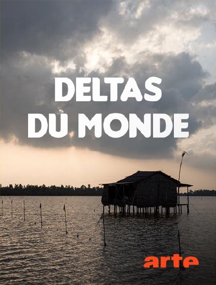Arte - Deltas du monde