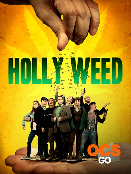 OCS Go - Holly Weed