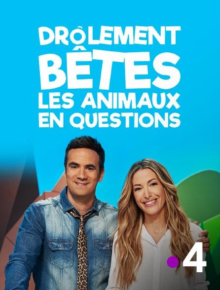 France 4 - Drôlement bêtes : les animaux en questions