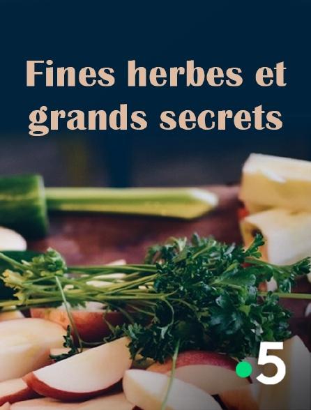 France 5 - Fines herbes et grands secrets