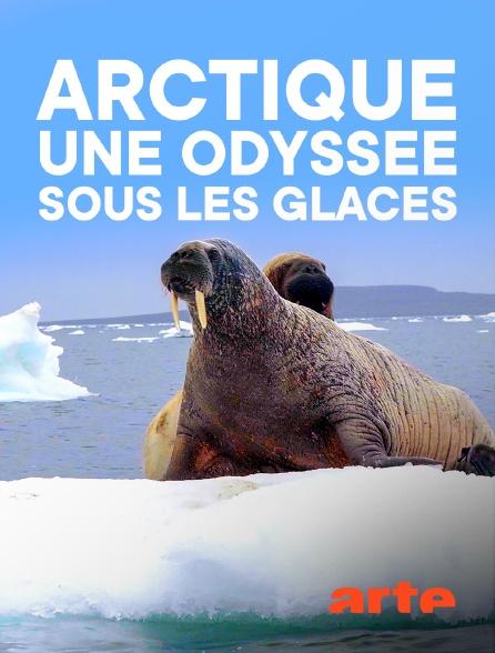 Arte - Arctique, une odyssée sous les glaces