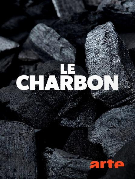 Arte - Le charbon