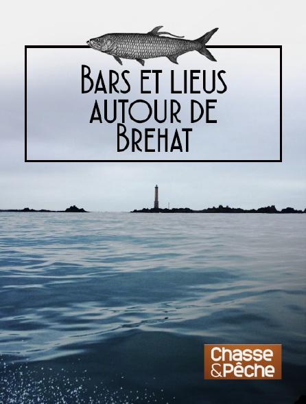 Chasse et pêche - Bars et lieus autour de Bréhat