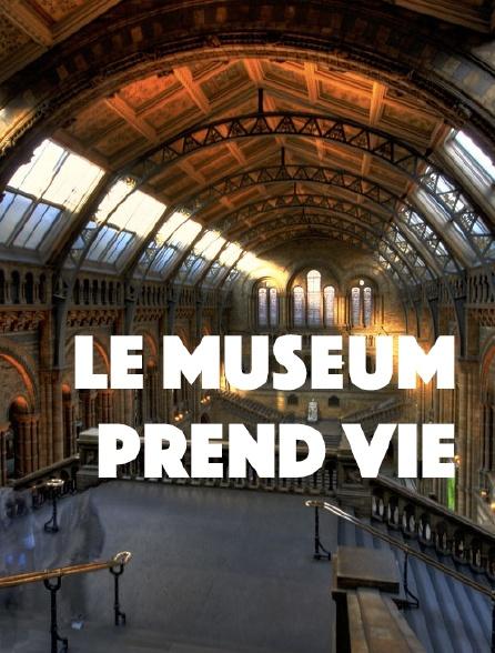 Le Museum prend vie