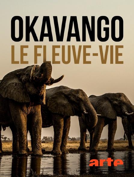 Arte - Okavango, le fleuve-vie