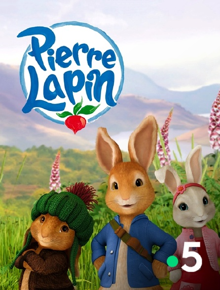 France 5 - Pierre Lapin