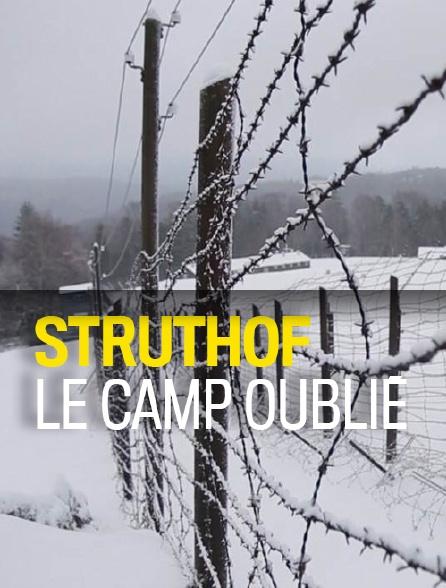 Struthof, le camp oublié