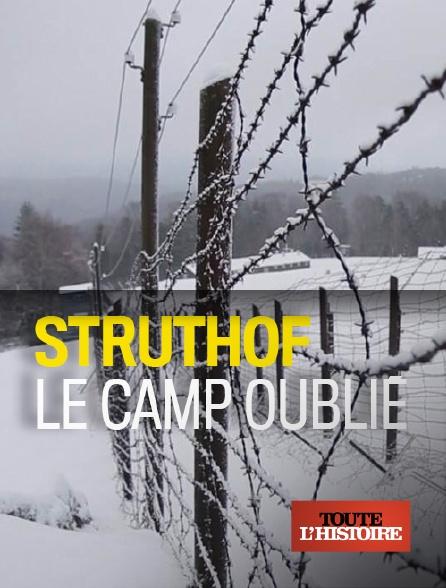 Toute l'histoire - Struthof, le camp oublié