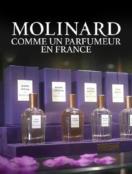 Molinard, comme un parfumeur en France