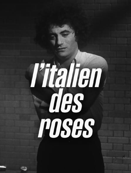 L'Italien des roses