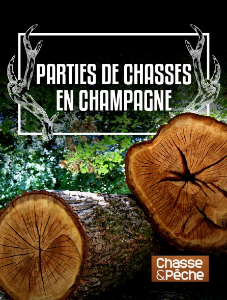 Chasse et pêche - Parties de chasses en Champagne