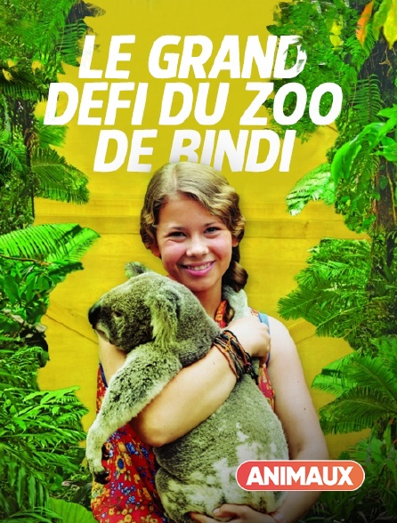 Animaux - Le grand défi du zoo de Bindi