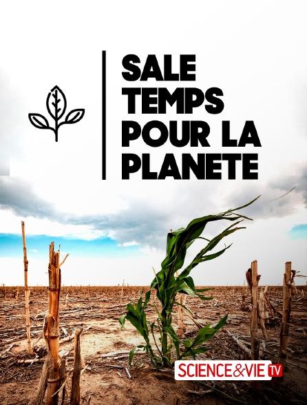 Science et Vie TV - Sale temps pour la planète en replay