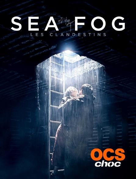 OCS Choc - Sea Fog : les clandestins