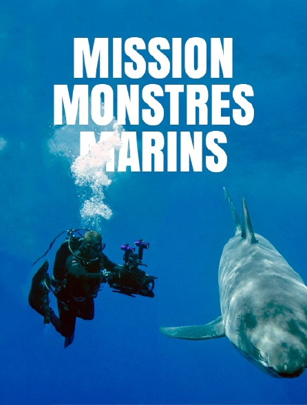 Mission monstres marins