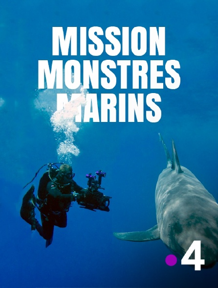 France 4 - Mission monstres marins