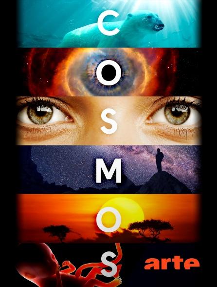 Arte - Cosmos : une odyssée à travers l'univers
