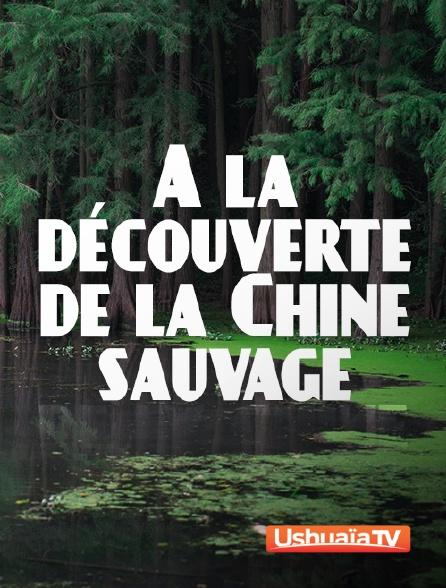 Ushuaïa TV - A la découverte de la Chine sauvage