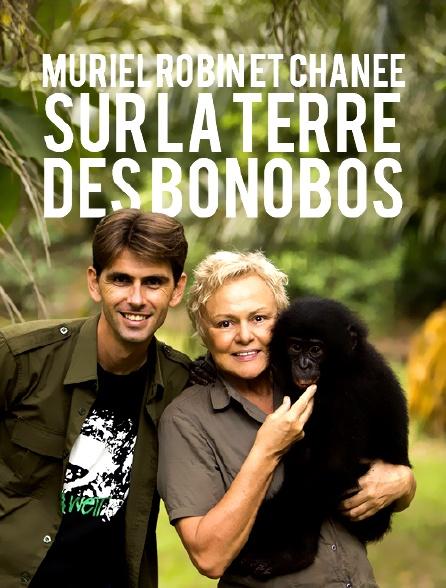 Le messager : Muriel Robin et Chanee sur la terre des bonobos