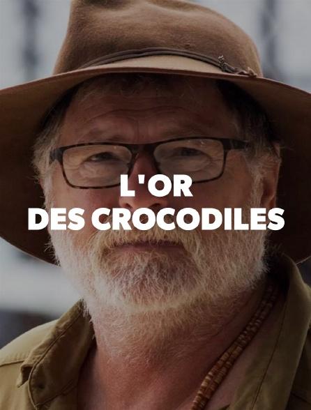 L'or des crocodiles